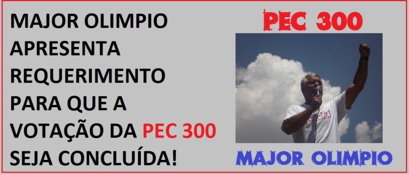 majorpec300